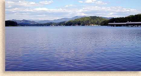 Young harris water sports hiawassee georgia nottely lake for Lake nottely fishing